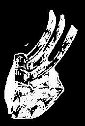 ribs-icon white
